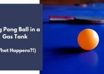 Ping Pong Ball in a Gas Tank: What REALLY Happens?! (Explained)